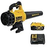 DEWALT 20V MAX XR Blower, Brushless,...