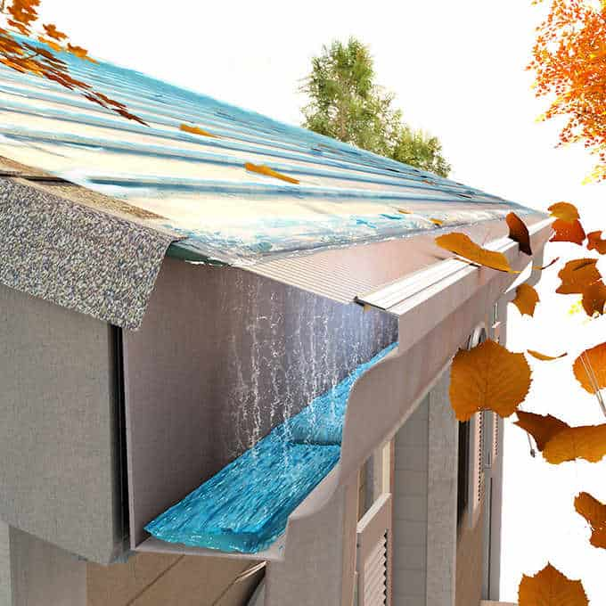 Top Brand Gutter Guard Reviews