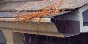 best gutter guards pine needles