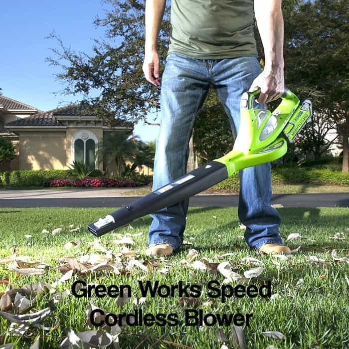 Best Cordless Leaf Blower reviews